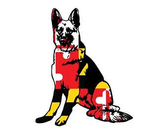 Maryland German Shepherd